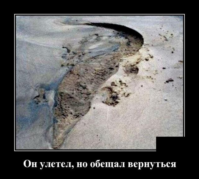 мимокрокодил